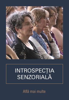 Introspectia senzoriala - Petros Liolios